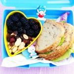 śniadaniówka do szkoły #2